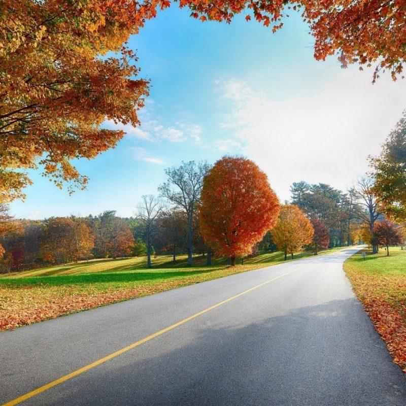 10 Most Popular Landscape Wallpaper Hd 1080P FULL HD 1080p For PC Desktop 2021 free download 1080p hd image nature pixelstalk 3 800x800