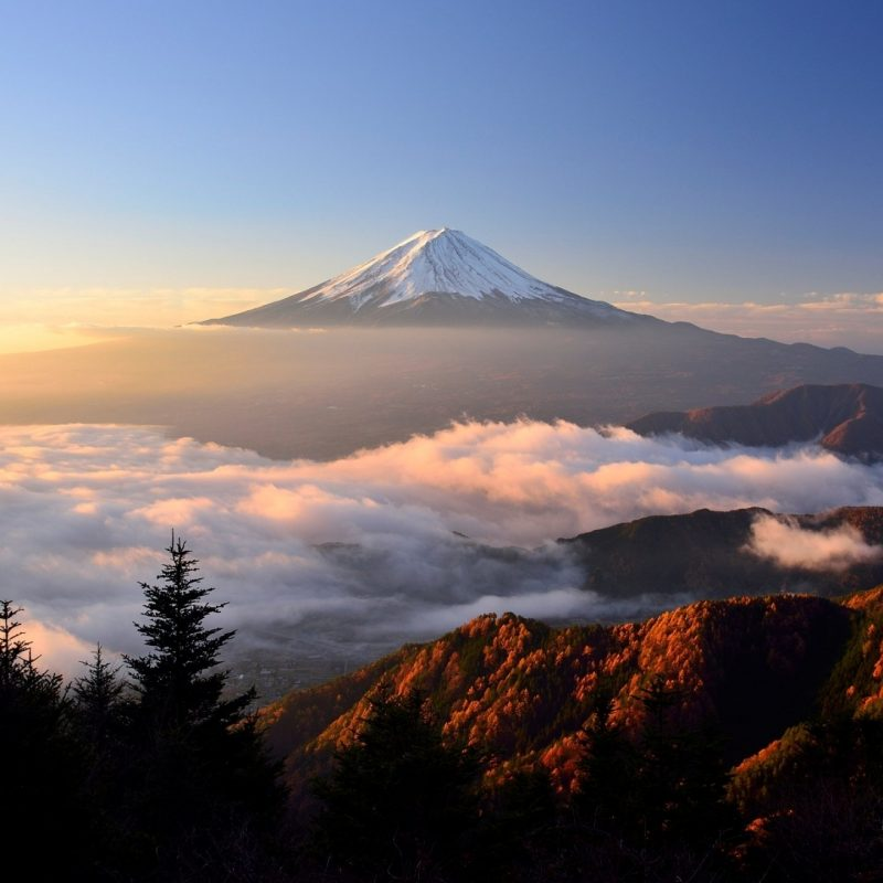 10 New Mount Fuji Hd Wallpaper FULL HD 1080p For PC Desktop 2018 free download 1280x720 mount fuji hd 720p hd 4k wallpapers images backgrounds 800x800