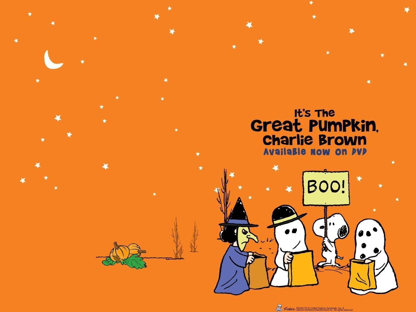 1663 free charlie brown wallpapers desktop