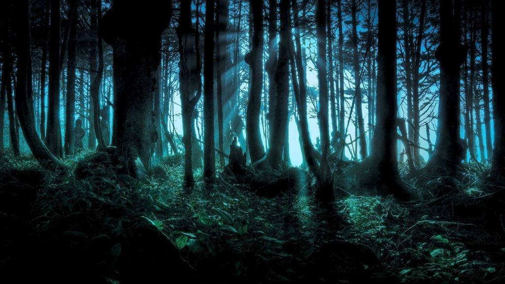 10 New Fantasy Forest Wallpaper Hd FULL HD 1080p For PC Desktop 2020 free download 200 forest hd wallpapers background images wallpaper abyss 2 1024x576