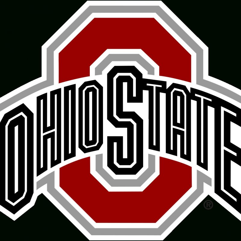 10 Top Ohio State Buckeyes Image FULL HD 1080p For PC Background 2018 free download 2007 ohio state buckeyes football team wikipedia 800x800