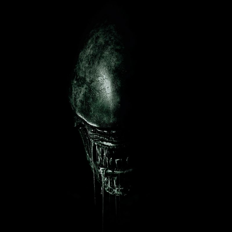 10 Best Alien Covenant Hd Wallpaper FULL HD 1080p For PC Desktop 2018 free download 2017 alien covenant 4k wallpapers hd wallpapers id 19845 800x800