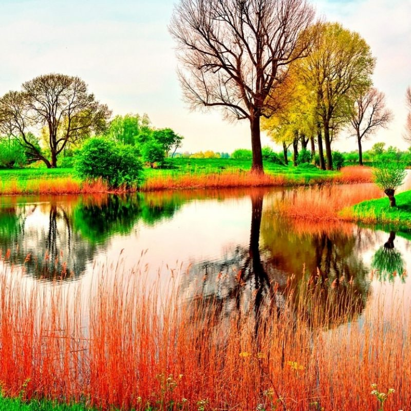 10 Top Spring Nature Wallpaper Desktop FULL HD 1920×1080 For PC Background 2018 free download 22 spring nature wallpapers backgrounds images freecreatives 1 800x800