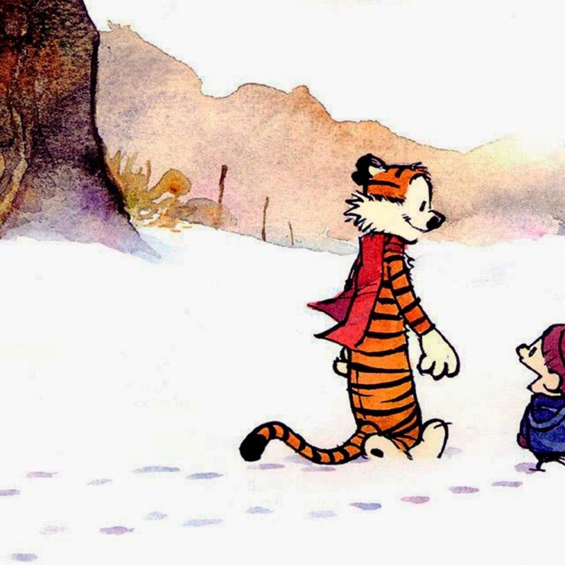 10 Best Calvin And Hobbes Hd Wallpaper FULL HD 1080p For PC Background 2018 free download 224 calvin hobbes hd wallpapers background images wallpaper abyss 800x800
