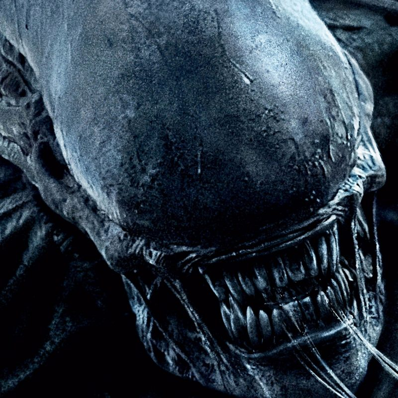 10 Most Popular Alien Covenant Wallpaper Hd FULL HD 1080p For PC Desktop 2018 free download 23 alien covenant fonds decran hd arriere plans wallpaper abyss 800x800