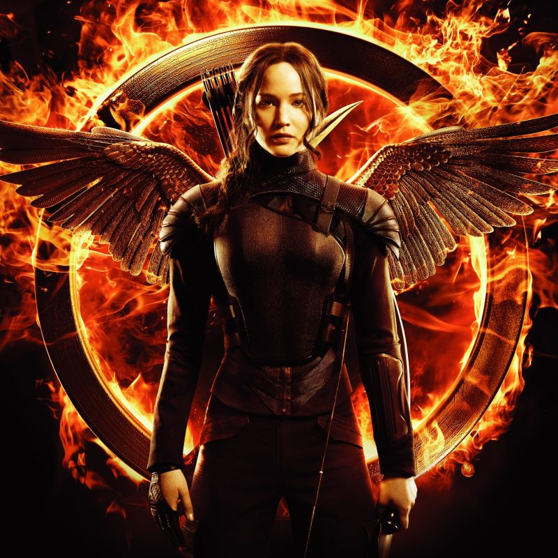 10 Most Popular The Hunger Games Wallpapers FULL HD 1920×1080 For PC Desktop 2018 free download 245 the hunger games hd wallpapers background images wallpaper abyss 800x800