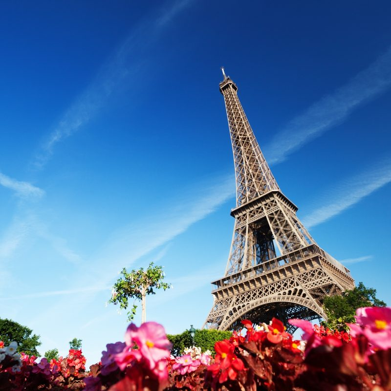 10 Top Eiffel Tower Wallpapers Hd FULL HD 1920×1080 For PC Background 2020 free download 248 eiffel tower hd wallpapers background images wallpaper abyss 2 800x800