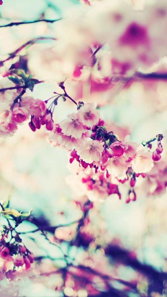 10 New 2017 Wallpaper For Iphone FULL HD 1080p For PC Desktop 2018 free download 27 floral iphone 7 plus wallpapers for a sunny spring preppy 576x1024