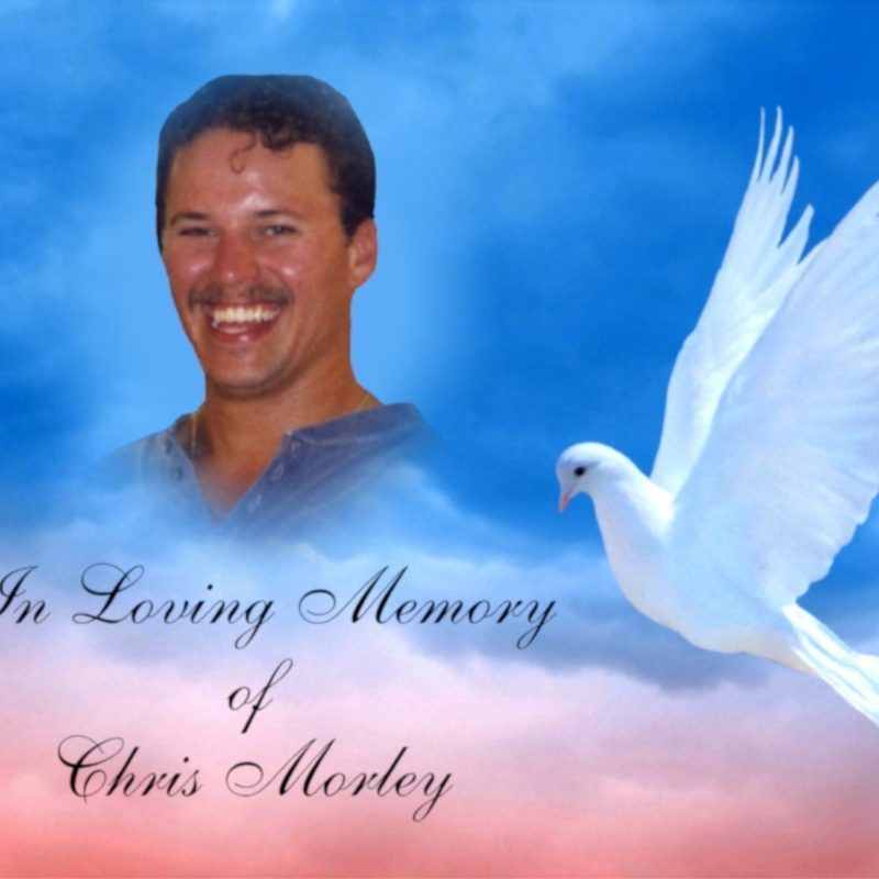 10 New In Loving Memory Backgrounds FULL HD 1920×1080 For PC Desktop 2018 free download 28 images of in loving memory backgrounds with a dove template 800x800