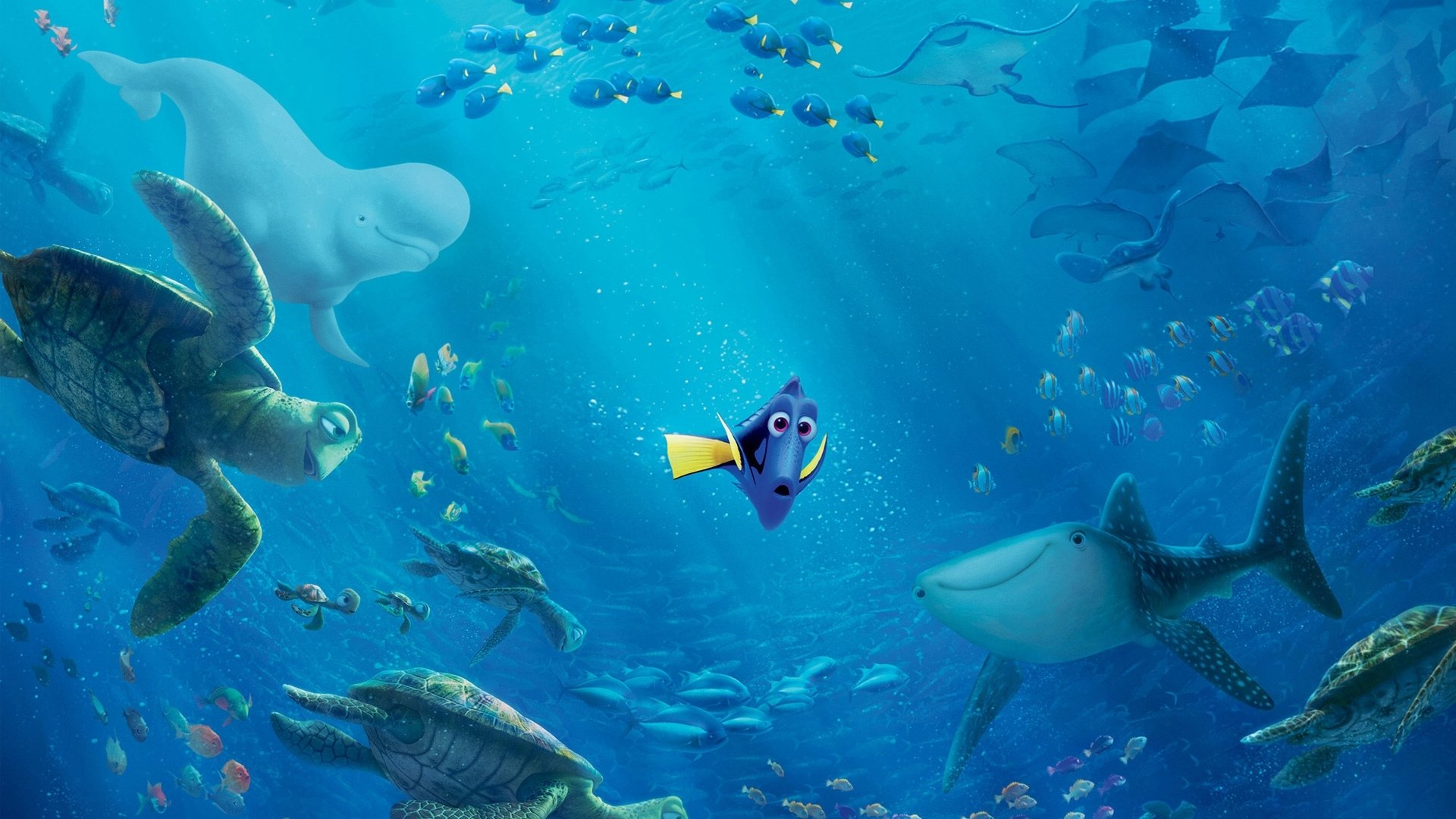 29 finding dory hd wallpapers | background images - wallpaper abyss