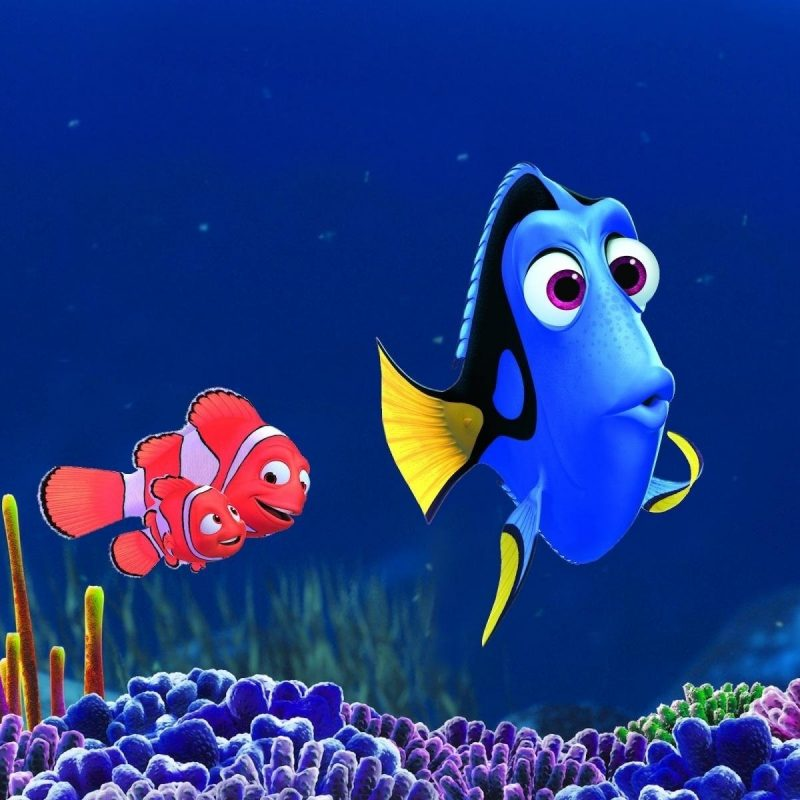 10 Latest Finding Nemo Hd Wallpaper FULL HD 1080p For PC Desktop 2018 free download 29 finding dory hd wallpapers background images wallpaper abyss 800x800