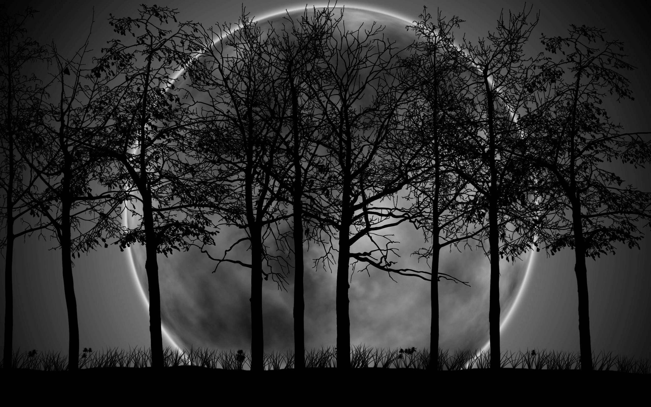 2930) dark forest moon wallpaper - walops