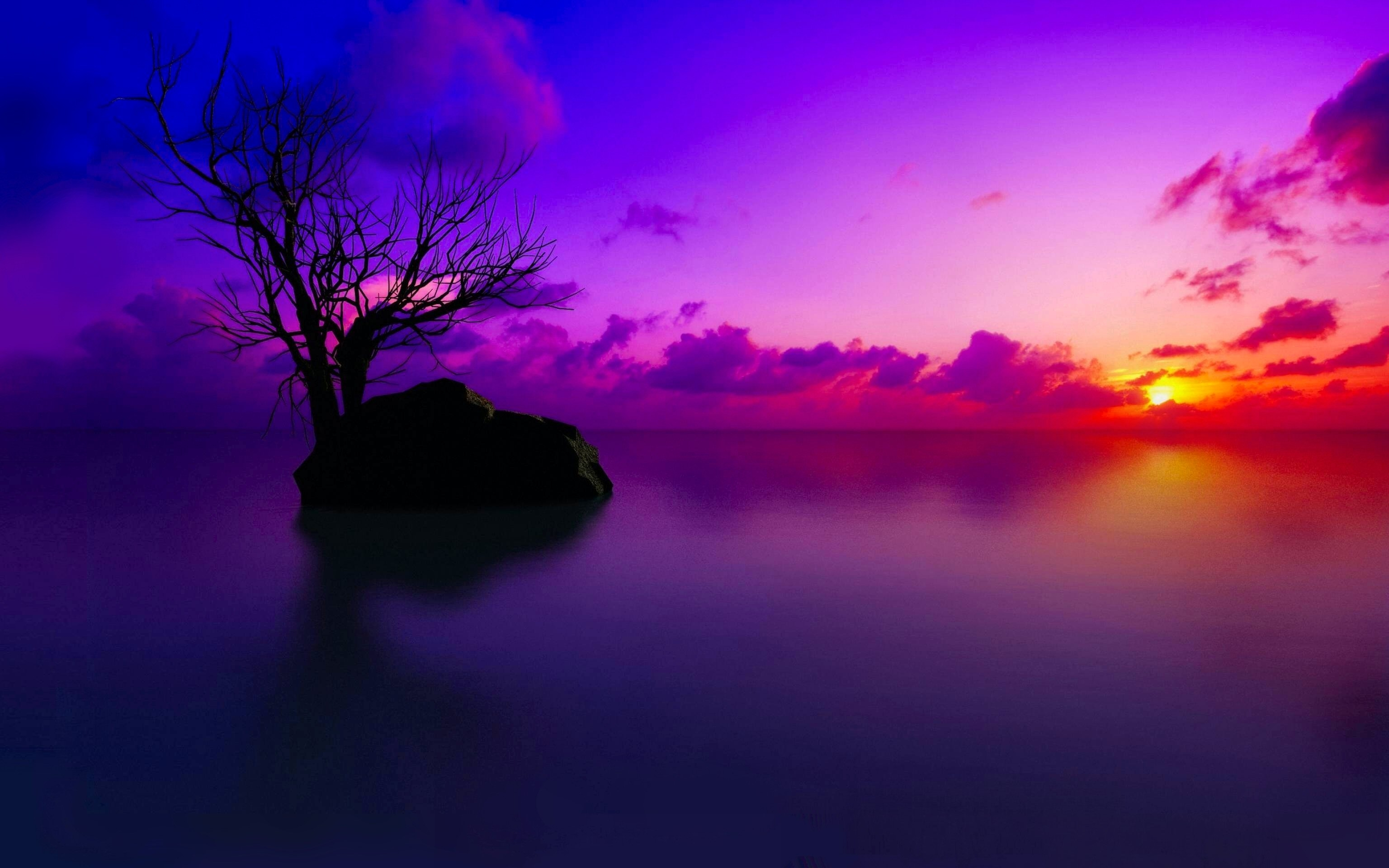 2947 sunset hd wallpapers | background images - wallpaper abyss