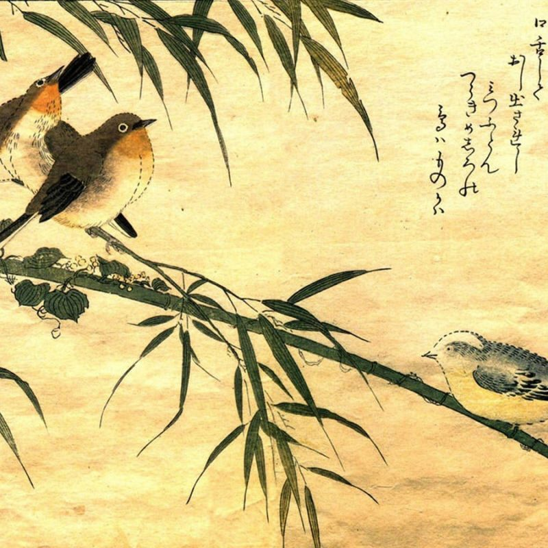 10 New Japanese Art Desktop Wallpaper FULL HD 1080p For PC Desktop 2018 free download 30 japanese art wallpapers japanese art 100 quality hd 1 800x800