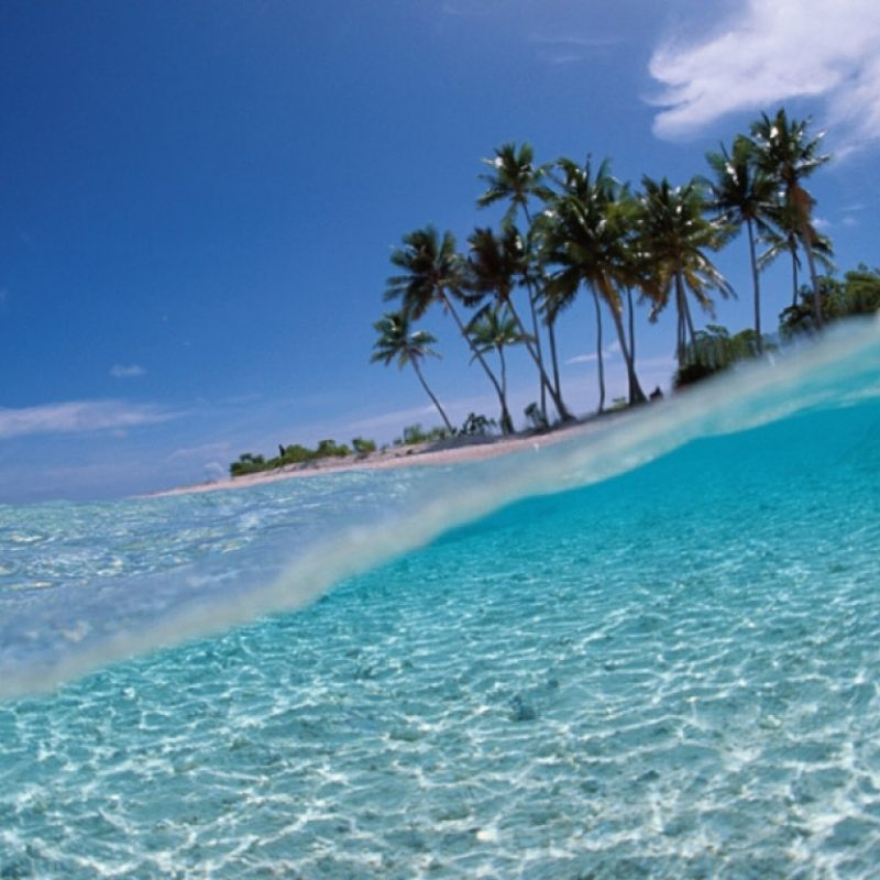 10 Best Tropical Island Wallpaper Hd FULL HD 1080p For PC Background 2020 free download 35 hd tropical island wallpapers for desktop wpaisle 800x800