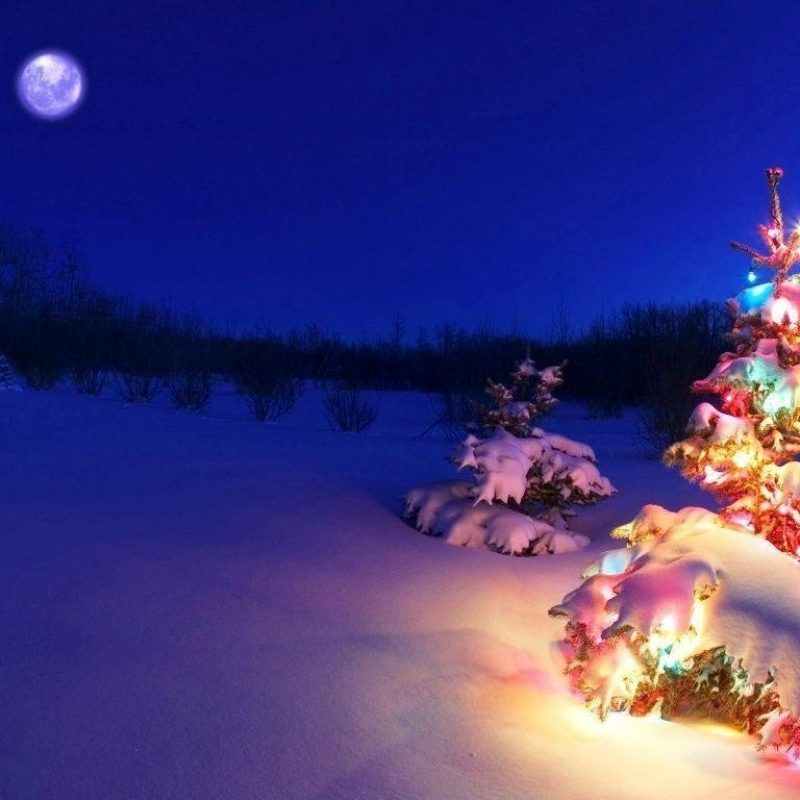 10 Best Christmas 3D Desktop Wallpaper FULL HD 1080p For PC Desktop 2020 free download 3d christmas backgrounds wallpaper cave 1 800x800