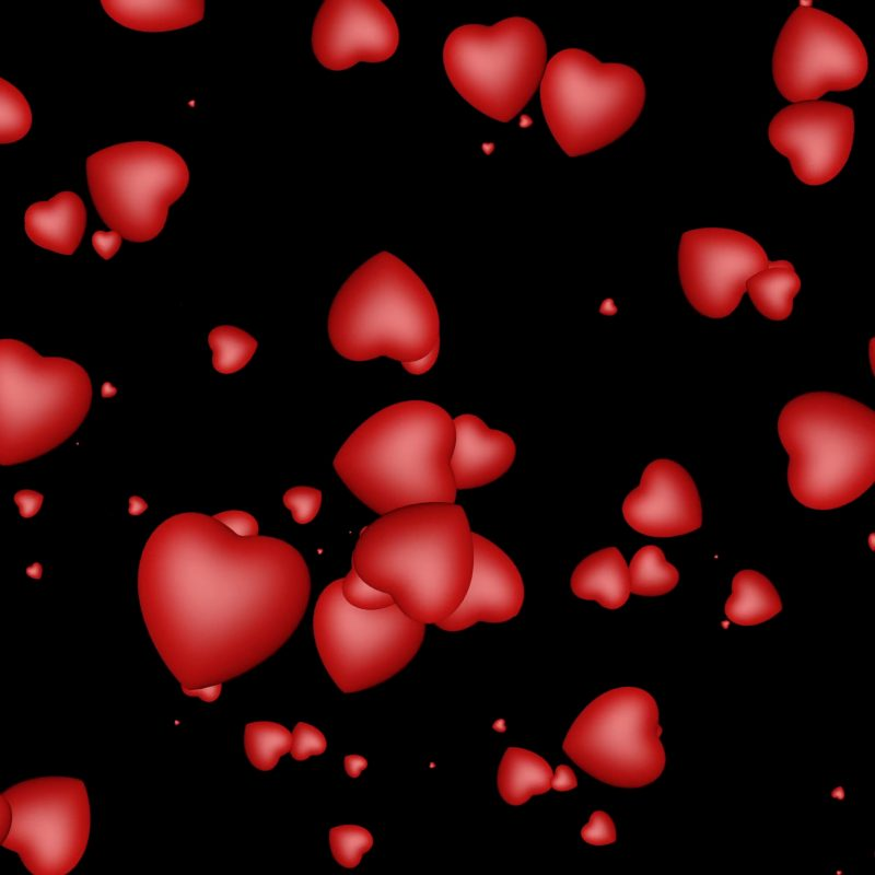 10 Top Red Hearts Black Background FULL HD 1920×1080 For PC Background 2018 free download 3d red hearts flying over black background seamless looping 800x800