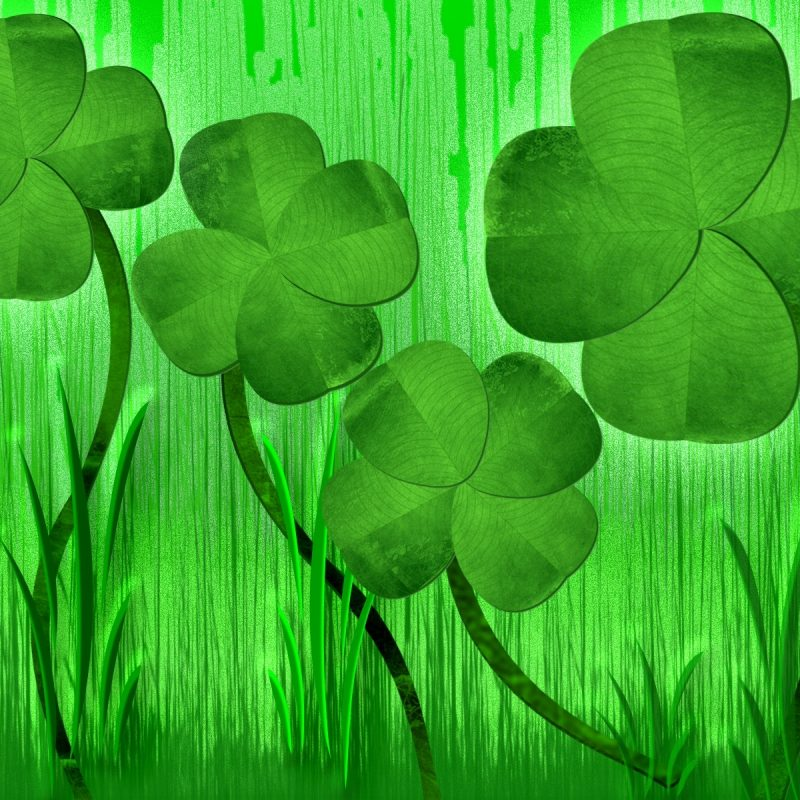 10 Top Four Leaf Clover Wallpaper FULL HD 1920×1080 For PC Background 2020 free download 4 four leaf clover onlookin 800x800