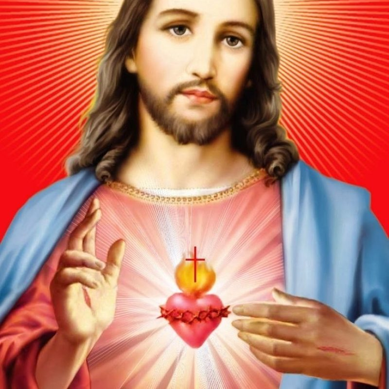 10 Latest Sacred Heart Of Jesus Image FULL HD 1920×1080 For PC Desktop 2020 free download 467 best sacred heart of jesus images on pinterest sacred heart 1 800x800