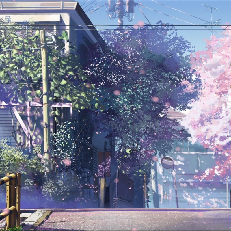 10 Most Popular 5 Centimeters Per Second Wallpaper FULL HD 1920×1080 For PC Background 2018 free download 5 centimeters per second wallpaper zerochan anime image board 1 800x800