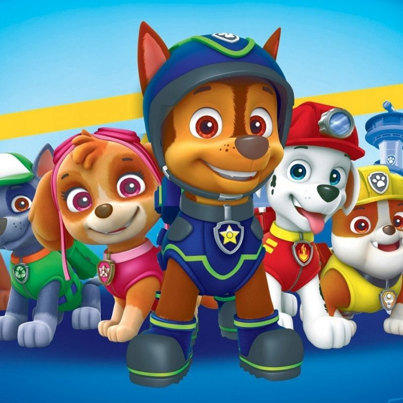 10 New Paw Patrol Desktop Wallpaper FULL HD 1920×1080 For PC Desktop 2018 free download 5 paw patrol hd wallpapers beautiful paw patrol wallpaper 800x800