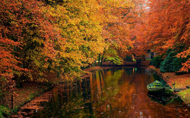 10 Latest Fall Scenes Wallpaper FULL HD 1080p For PC Desktop 2018 free download 50 fall scene wallpapers on wallpaperplay 2 800x500