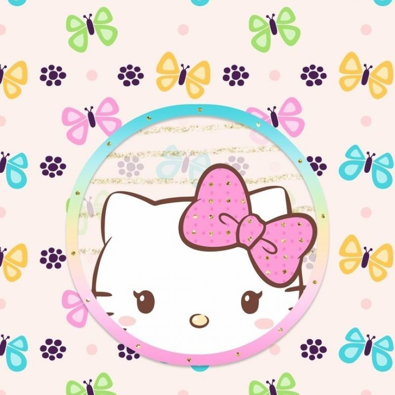 10 New Cute Hello Kitty Wallpaper FULL HD 1080p For PC Background 2018 free download 531 best hello kitty wallpaper 2 images on pinterest iphone 800x800