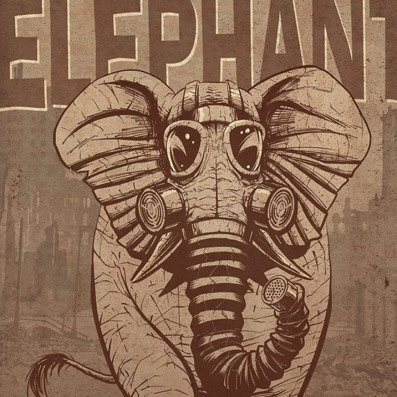 10 New Cage The Elephant Wallpaper FULL HD 1080p For PC Desktop 2018 free download 54 best cage the elephant images on pinterest the elephants cage 800x800