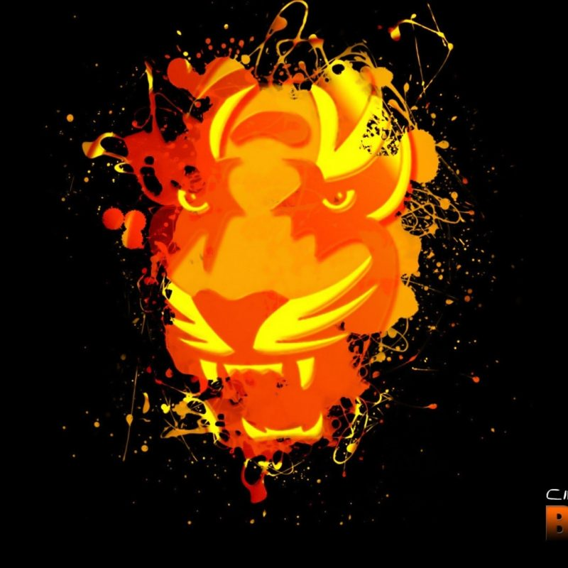 10 Most Popular Cincinnati Bengals Hd Wallpaper FULL HD 1080p For PC Background 2020 free download 55 cincinnati bengals hd wallpapers background images wallpaper 800x800