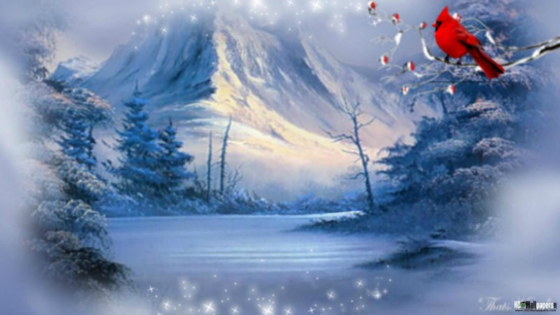 10 New Winter Scene Wallpapers Free FULL HD 1080p For PC Desktop 2020 free download 55 winter scene wallpapers on wallpaperplay 1 800x450