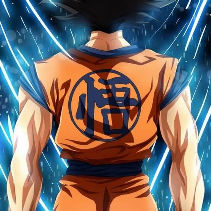 10 Latest Dragon Ball Super Wallpaper Iphone FULL HD 1920×1080 For PC Background 2018 free download 62 best dragon ball images on pinterest dragon ball z dragon 800x800