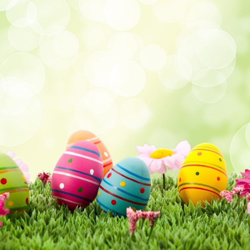 10 Most Popular Happy Easter Wallpaper Hd FULL HD 1920×1080 For PC Background 2020 free download 649 easter hd wallpapers background images wallpaper abyss 1 800x800