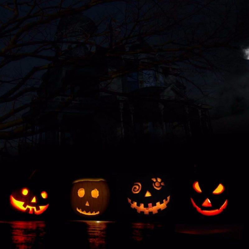 10 Best Widescreen Halloween Wallpaper FULL HD 1920×1080 For PC Desktop 2018 free download 7 pumpkins 4k halloween wallpaper free 4k wallpaper 800x800