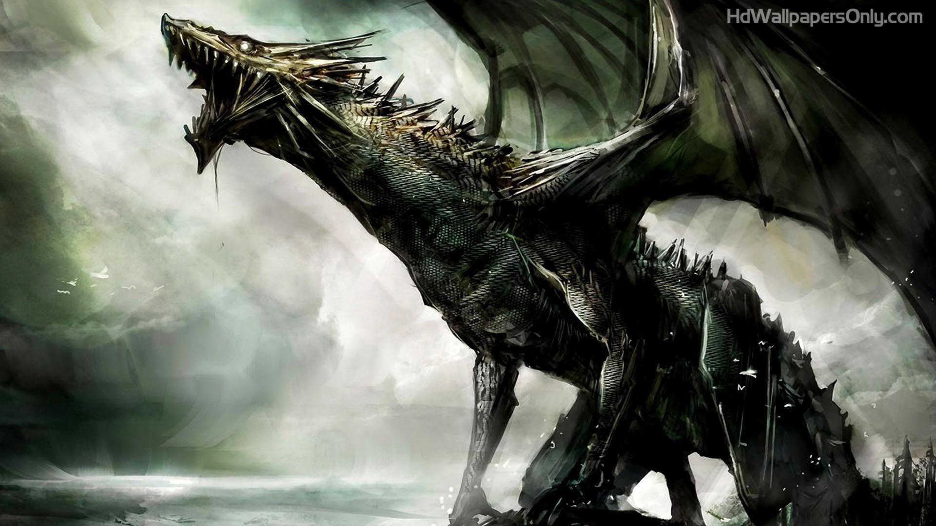 70+ black dragon wallpapers on wallpaperplay