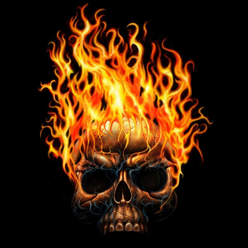 10 Top Skull On Fire Wallpaper FULL HD 1920×1080 For PC Background 2018 free download 732 skull hd wallpapers background images wallpaper abyss 800x800