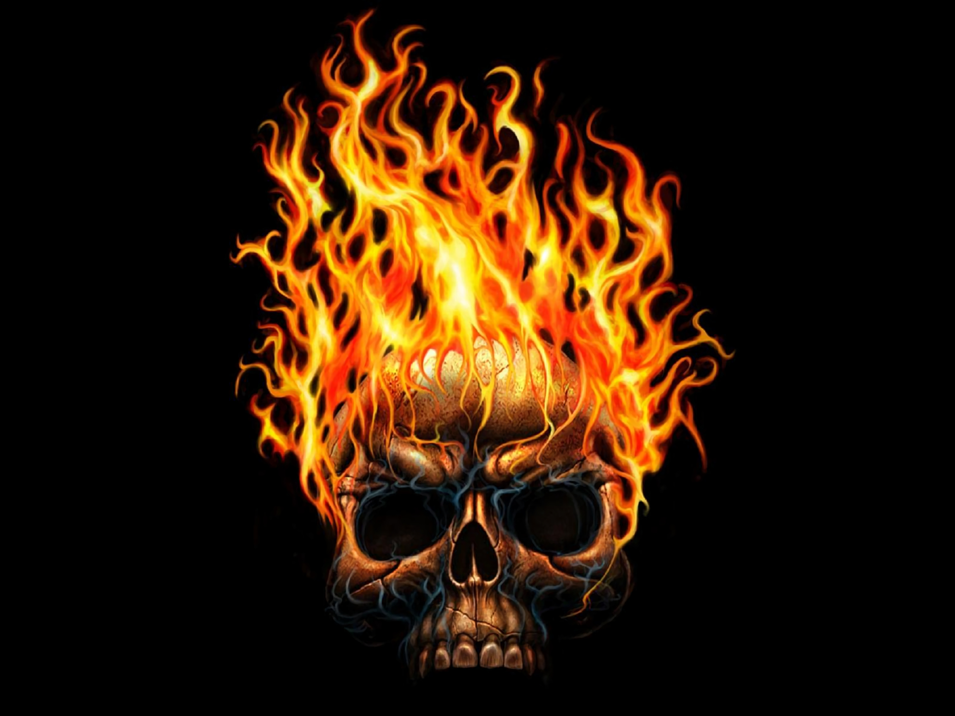 732 skull hd wallpapers | background images - wallpaper abyss