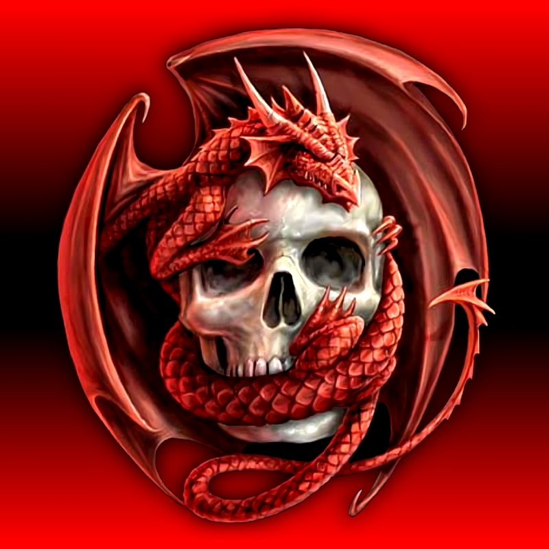 10 Latest Red Dragon Wallpaper Hd 1080P FULL HD 1920×1080 For PC Background 2018 free download 733 skull hd wallpapers background images wallpaper abyss 800x800