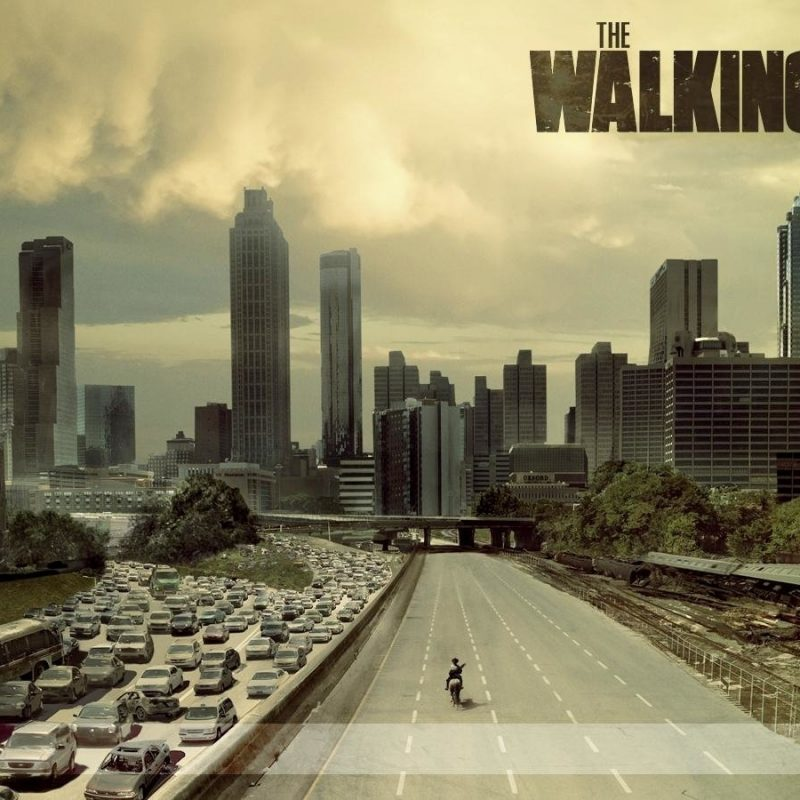 10 Latest The Walking Dead Hd Wallpaper FULL HD 1920×1080 For PC Background 2018 free download 763 the walking dead hd wallpapers background images wallpaper abyss 2 800x800