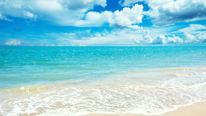 10 New Summer Backgrounds For Desktop FULL HD 1080p For PC Desktop 2021 free download 81 summer desktop wallpapers on wallpaperplay 800x450