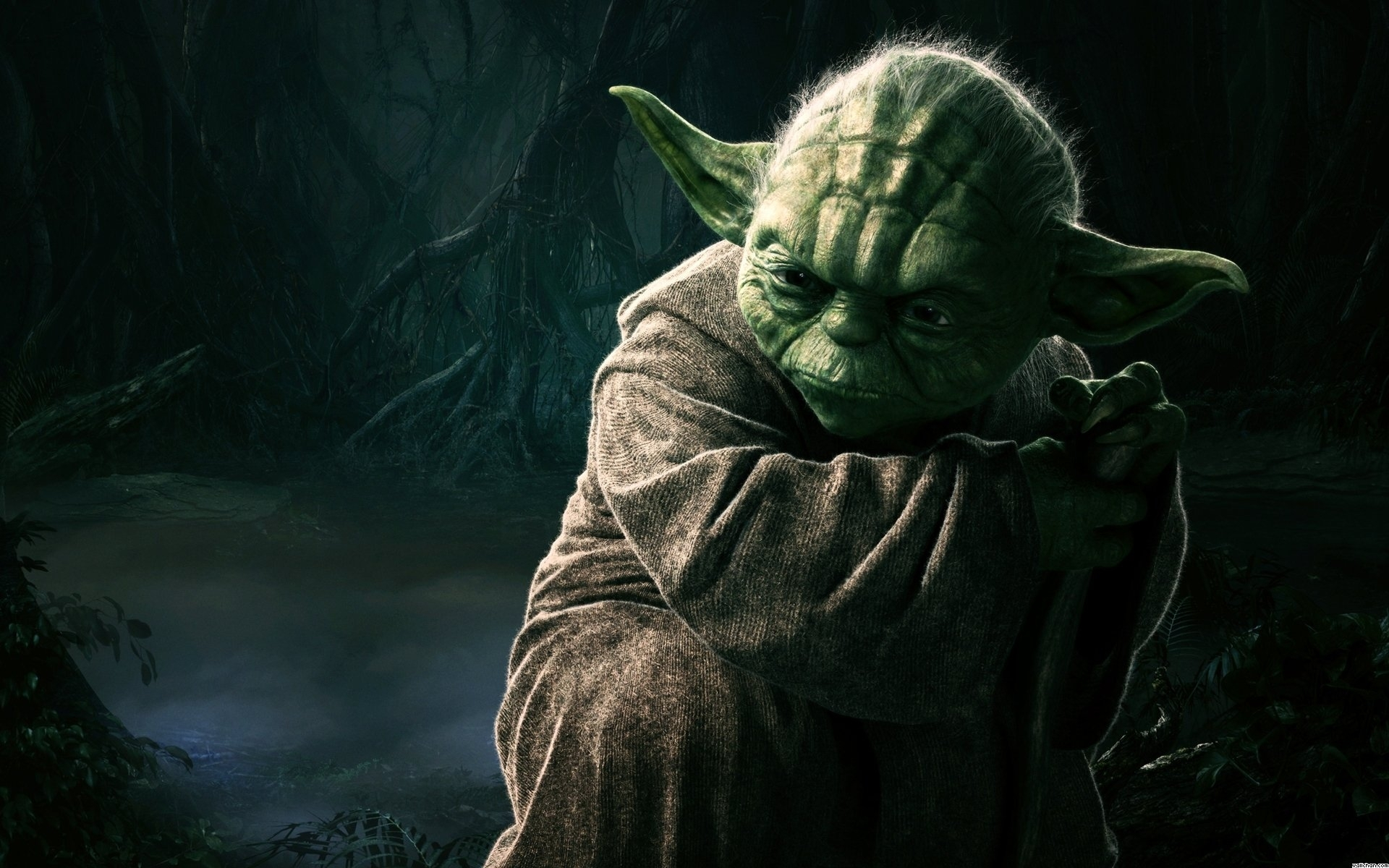 82 yoda hd wallpapers | background images - wallpaper abyss