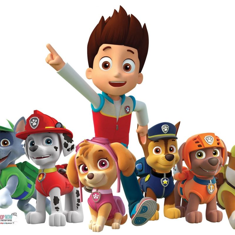 10 New Paw Patrol Desktop Wallpaper FULL HD 1920×1080 For PC Desktop 2018 free download 83 paw patrol wallpapers for desktop for pc mac tablet laptop 800x800