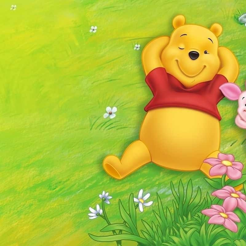 10 Top Winnie The Pooh Desktop Wallpaper FULL HD 1080p For PC Background 2020 free download 84 winnie the pooh hd wallpapers background images wallpaper abyss 1 800x800