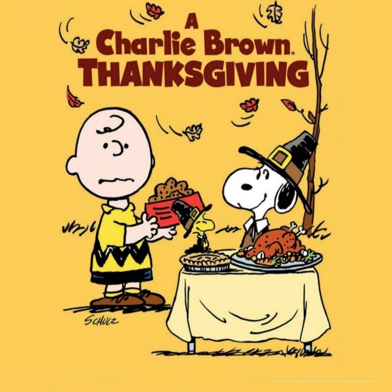 10 Latest Happy Thanksgiving Charlie Brown Wallpaper FULL HD 1920×1080 For PC Background 2018 free download a charlie brown thanksgiving marge t large reviews 800x800