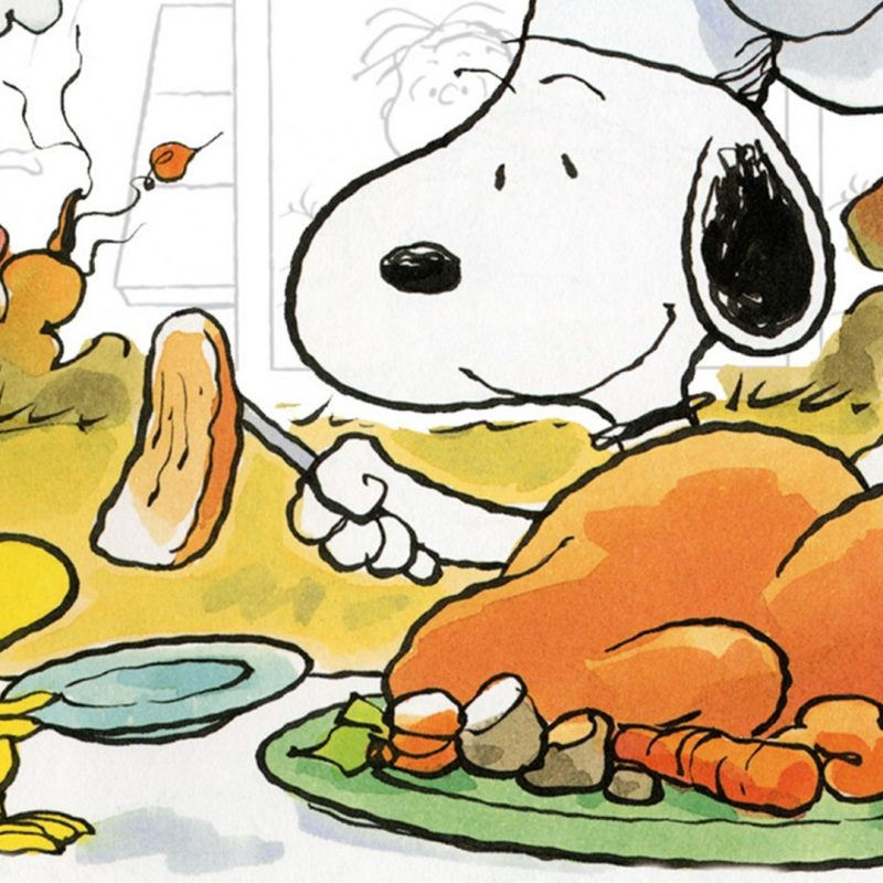 10 Latest Happy Thanksgiving Charlie Brown Wallpaper FULL HD 1920×1080 For PC Background 2018 free download a charlie brown thanksgiving movie fanart fanart tv 800x800