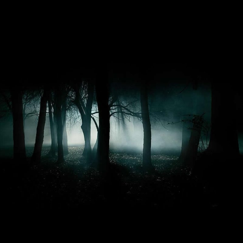 10 Latest Cool Dark Backgrounds Hd FULL HD 1920×1080 For PC Desktop 2020 free download abstract hd forest 41564 wallpaper wallpaper 800x800
