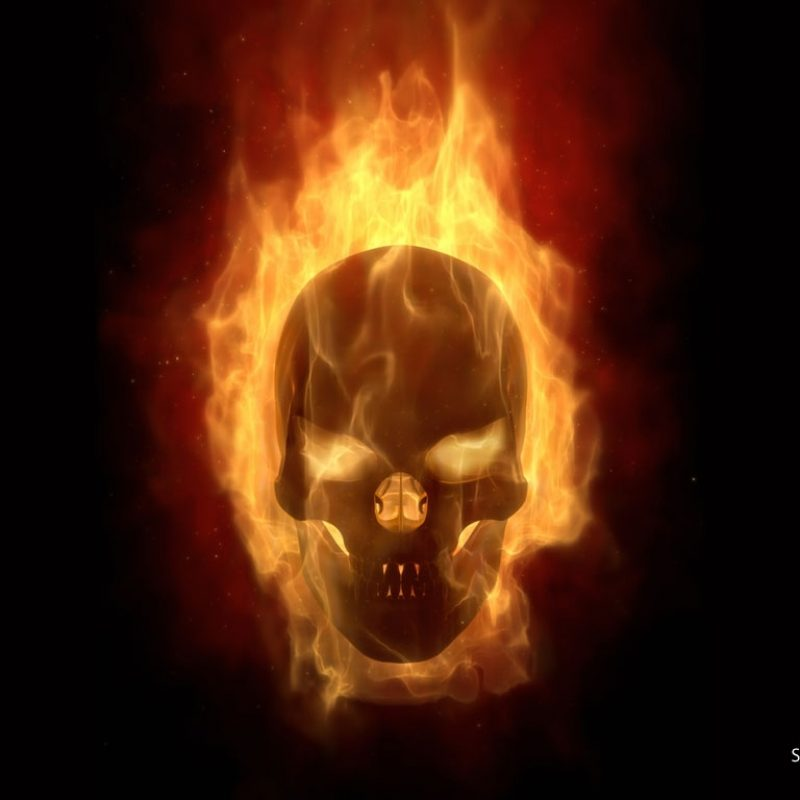 10 Top Skull On Fire Wallpaper FULL HD 1920×1080 For PC Background 2018 free download abstract wallpaper 289 800x800