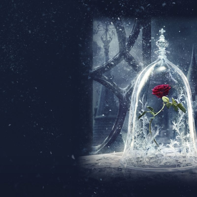 10 Latest Beauty And The Beast Wallpapers FULL HD 1080p For PC Background 2018 free download add some magic to your devices with these beauty and the beast 4 800x800
