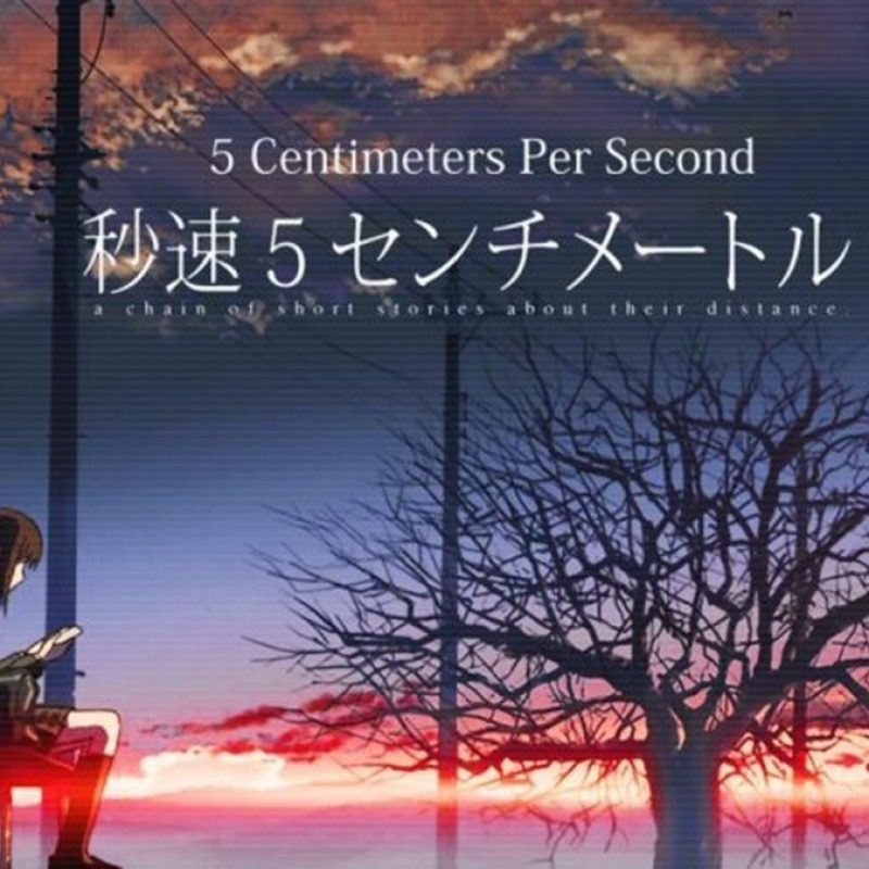 10 New 5 Centimeters Per Second Poster FULL HD 1080p For PC Background 2018 free download affiches posters et images de 5 centimeters per second 2007 800x800