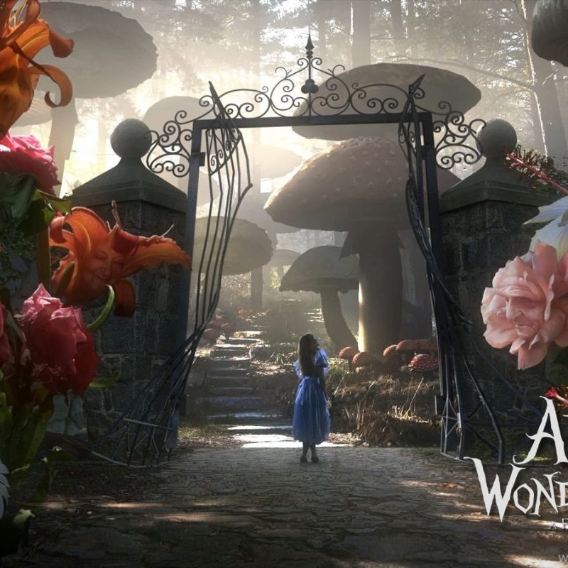 10 Latest Alice In Wonderland Hd Wallpapers FULL HD 1080p For PC Background 2018 free download alice in wonderland hd wallpapers and backgrounds desktop background 800x800