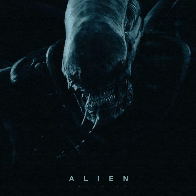 10 Most Popular Alien Covenant Wallpaper Hd FULL HD 1080p For PC Desktop 2018 free download alien covenant wallpapers wallpaper cave 1 800x800